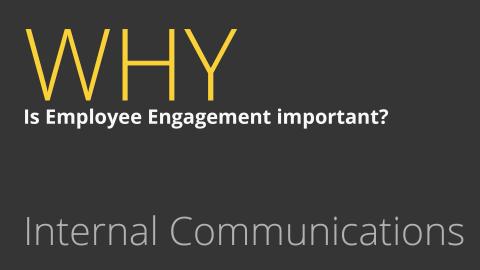 Employee engagement BOXmedia